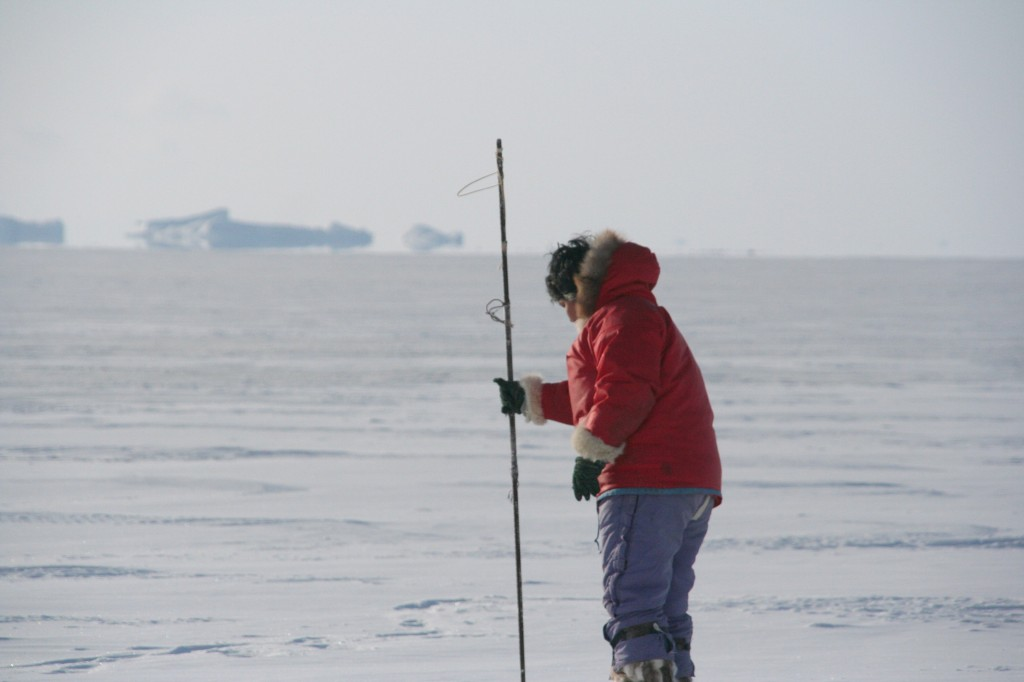 Toku Oshima tests the ice before proceeding with his sled and dogs in Avannaa, Greenland. Hunters like Oshima provide valuable observations of sea ice. Credit: A. Moahoney/NSIDC